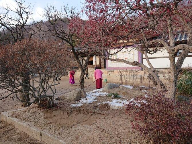 韓国民俗村のチマチョゴリ