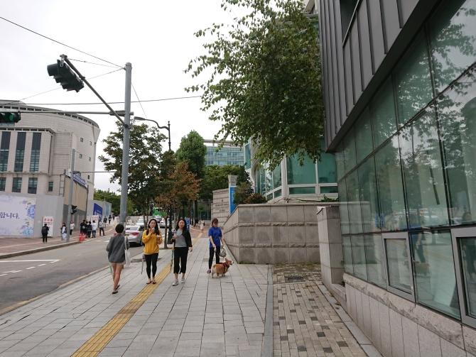 韓国の淑明女子大学校の写真