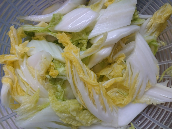 白菜の浅漬けキムチ(コッチョリ)の韓国レシピ
