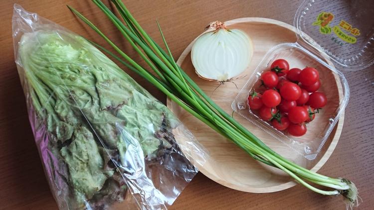 チョレギサラダ(サニーレタスのサラダ)の材料