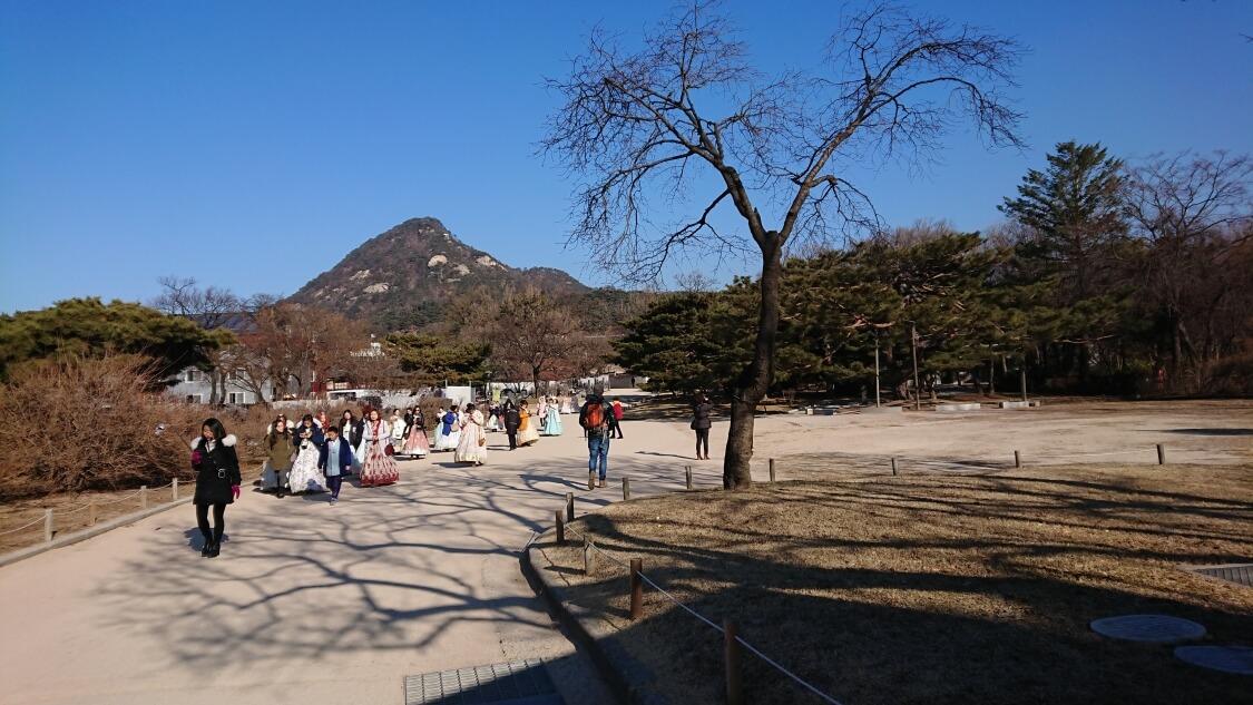 韓国ソウルの景福宮(キョンボックン)の風景