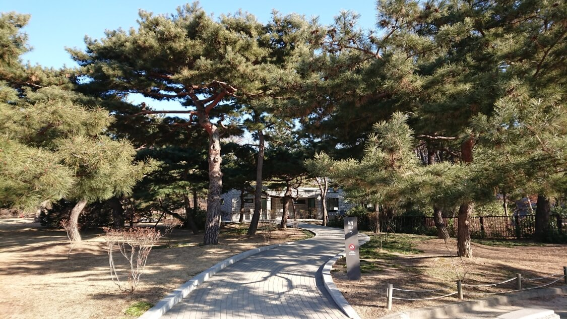 韓国ソウルの景福宮(キョンボックン)の建物