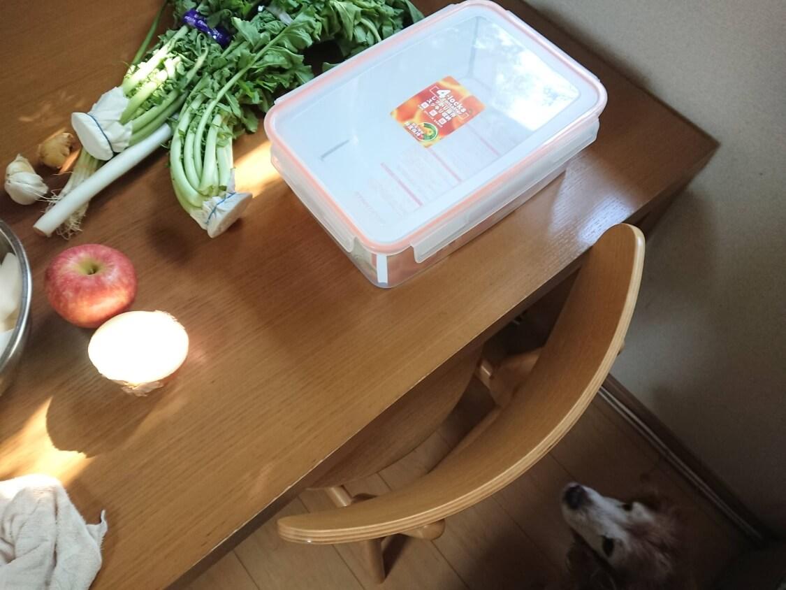 大根の葉入り!カクテキキムチの韓国レシピ。容器