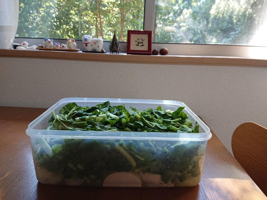 大根の葉入り!カクテキキムチの韓国レシピ。塩で漬ける時間