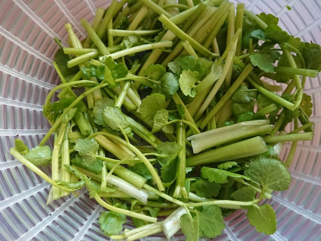 旨辛!あんこうの蒸し煮・アグチムの作り方。野菜の準備