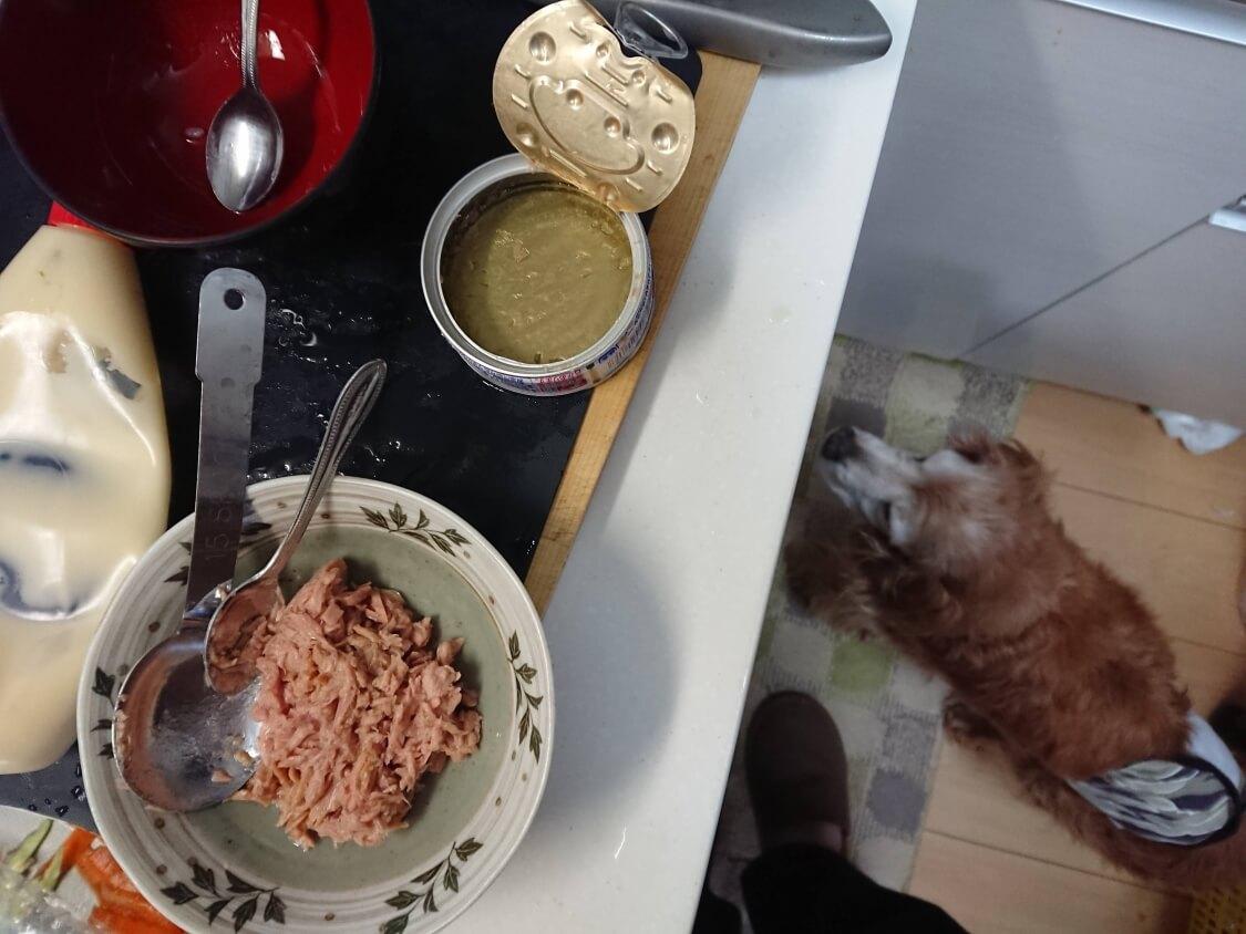 火を使わない!簡単ツナキンパ+野菜キンパの作り方。ツナマヨの味付け