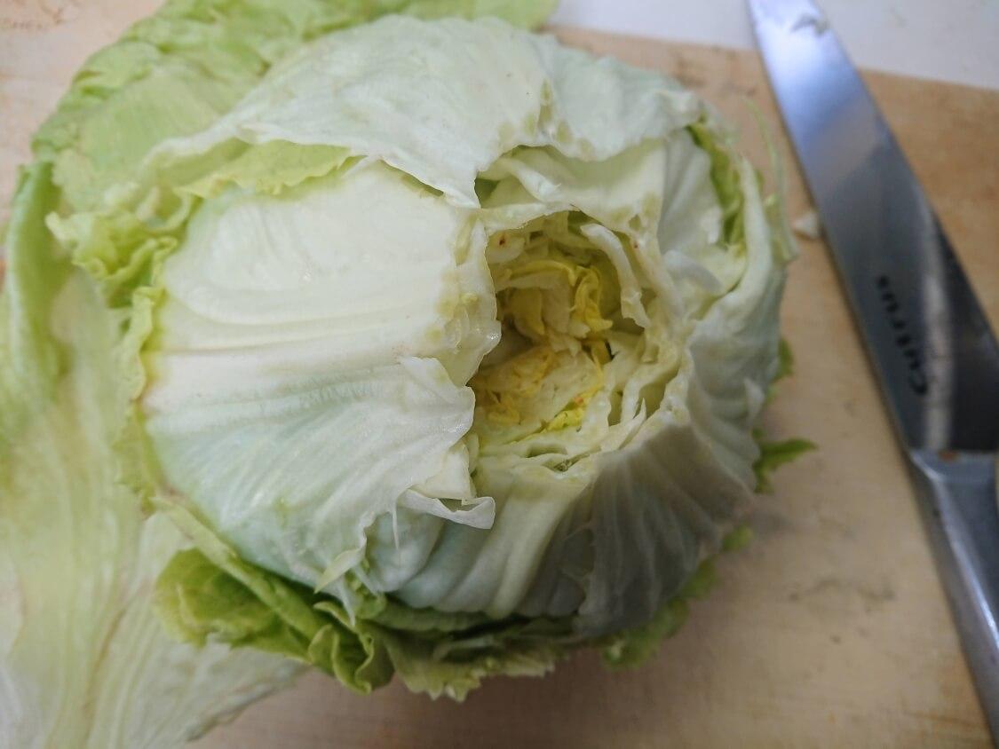 茹でたレタスで!塩昆布和えナムルの簡単レシピ。作り方