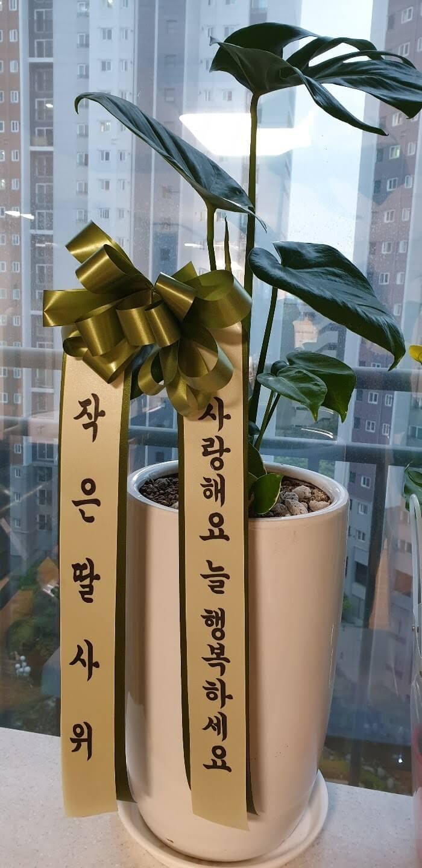 韓国の父母の日(オボイナル)プレゼント