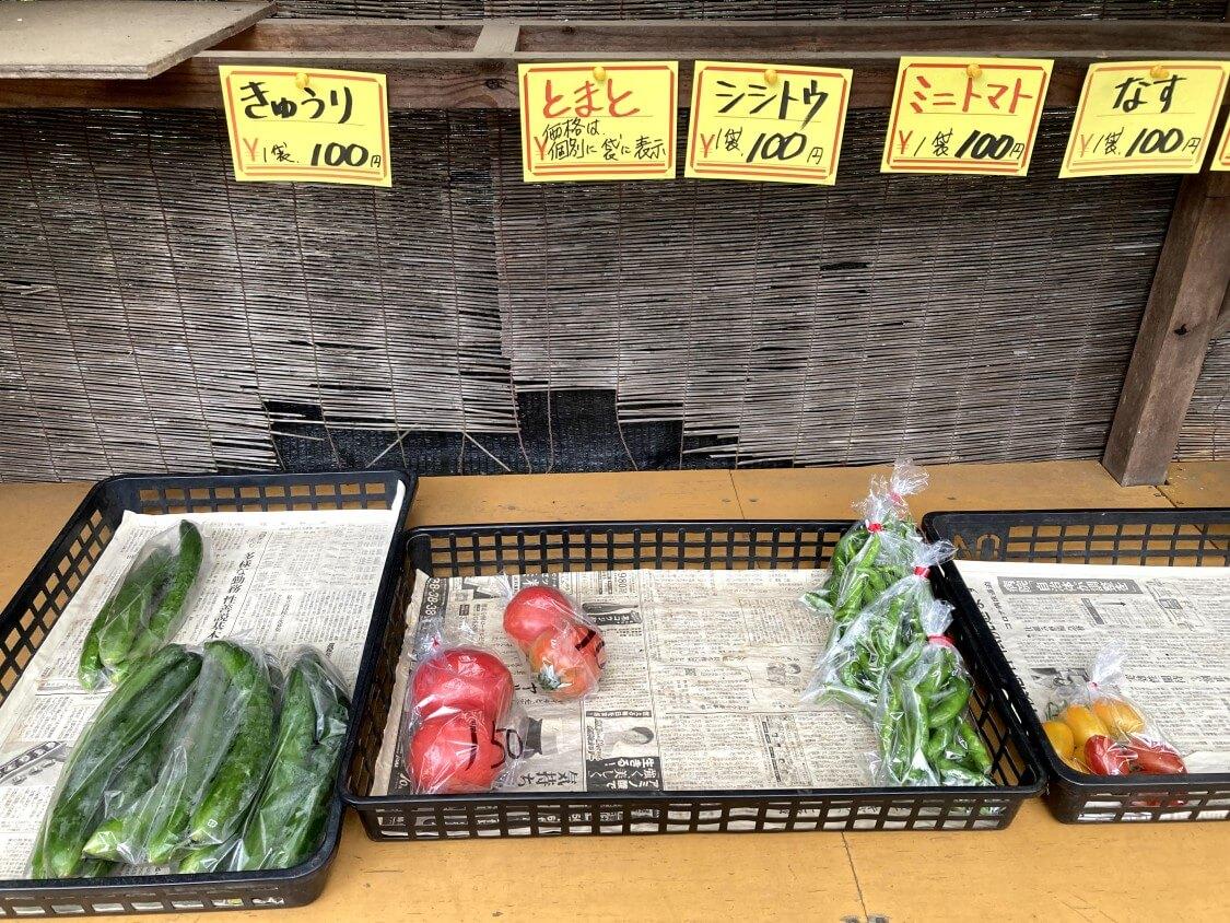 電子レンジで♪ししとうの甘辛和えレシピ。夏の野菜ししとうの購入