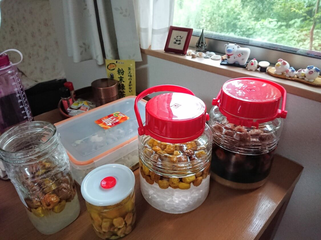韓国の梅シロップ(メシルチョン)と梅チャンアチの作り方