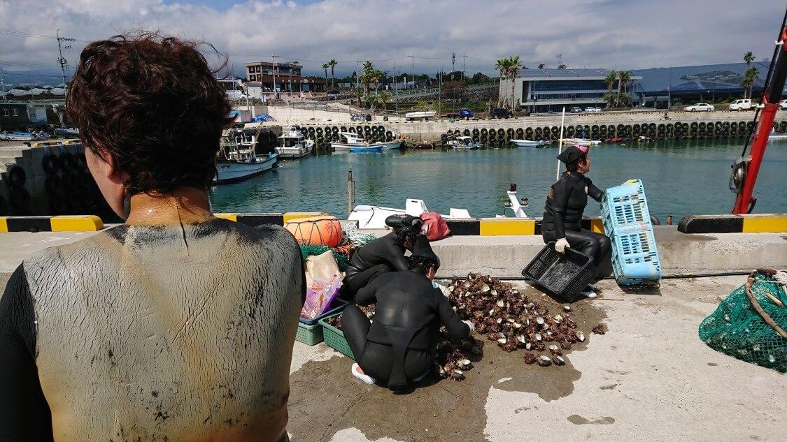 【チェジュ島旅③】海女が採ったものは特産の貝