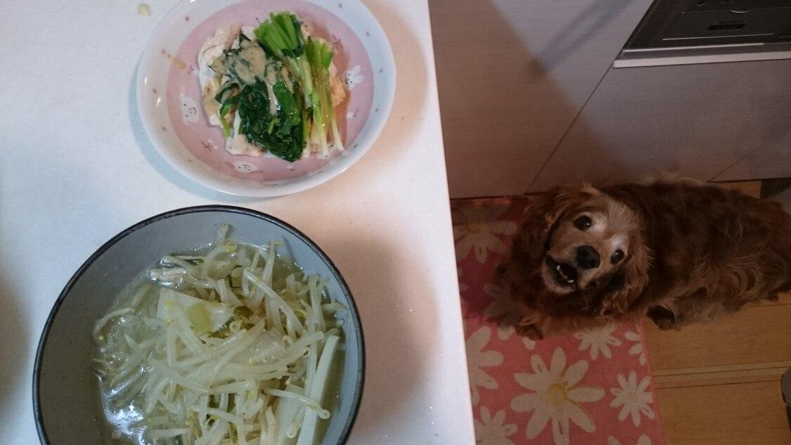 もやしナムルの韓国人気レシピ。モヤシ料理とマシュー